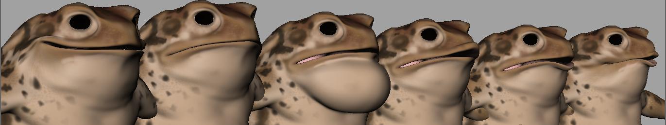 Toad - Spencer Rafael Diaz